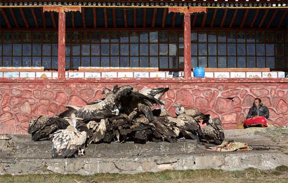 【グロ注意】チベットに今も伝わる鳥葬、文化としてはともかく見た目がグロい・・・・・(画像)・4枚目