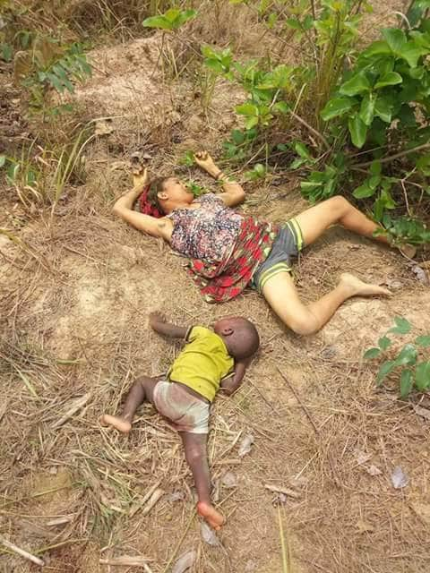 """【血みどろの争い】アフリカの超危険部族""""フラニ族""""、周囲の部族に仲間を虐殺されさらに復讐で50人以上虐殺しかえす・・・・・(画像)・1枚目"""