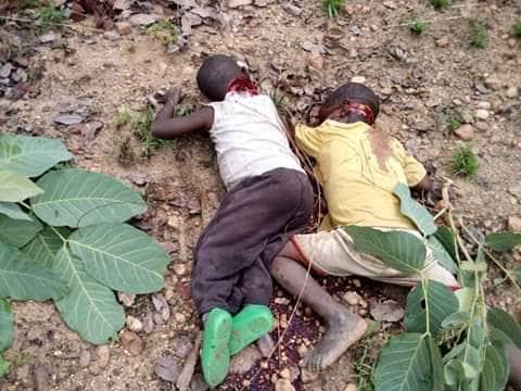 """【血みどろの争い】アフリカの超危険部族""""フラニ族""""、周囲の部族に仲間を虐殺されさらに復讐で50人以上虐殺しかえす・・・・・(画像)・2枚目"""
