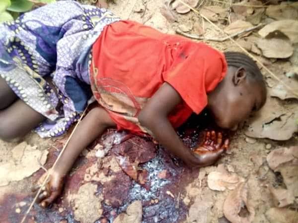 """【血みどろの争い】アフリカの超危険部族""""フラニ族""""、周囲の部族に仲間を虐殺されさらに復讐で50人以上虐殺しかえす・・・・・(画像)・5枚目"""
