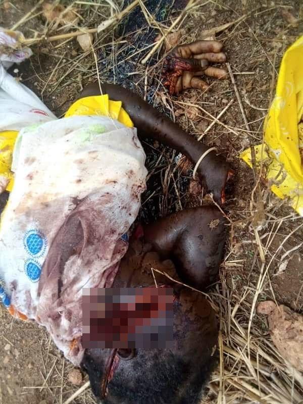 """【血みどろの争い】アフリカの超危険部族""""フラニ族""""、周囲の部族に仲間を虐殺されさらに復讐で50人以上虐殺しかえす・・・・・(画像)・7枚目"""