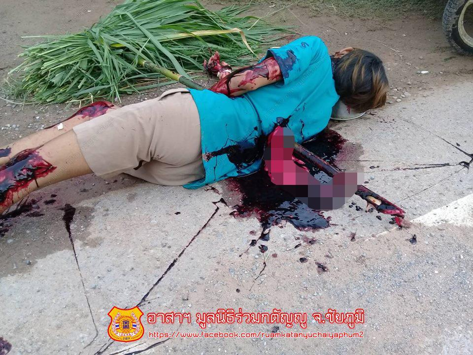 【グロ注意】タイで起こった壮絶な事故現場の画像が・・・・・ってフェイクかよ!!(画像)・8枚目