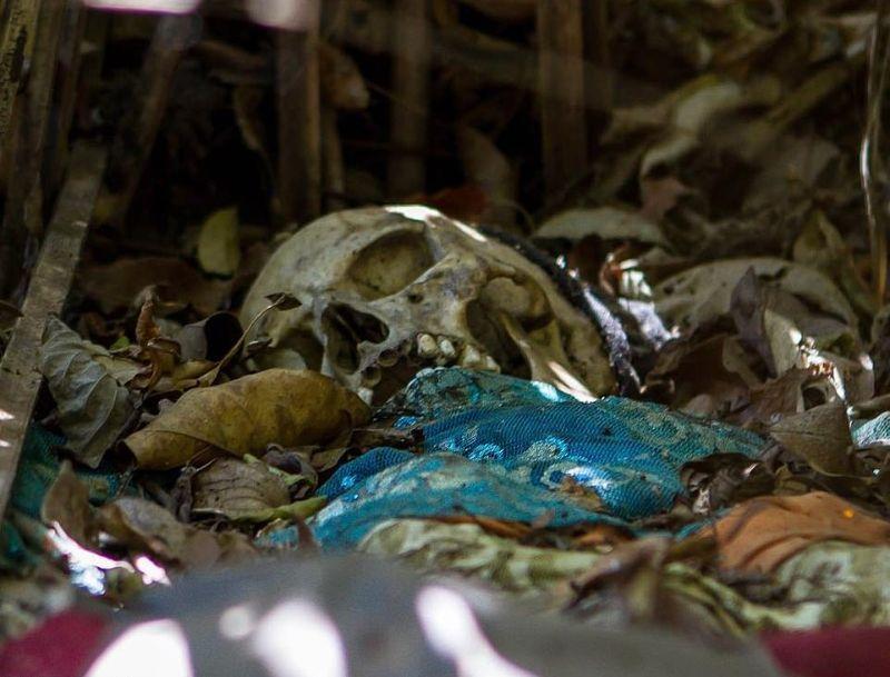 """【自然派】インドネシア バリ島のトルニャン村に伝わる""""風葬""""という埋葬方法、凄い光景・・・・(画像)・2枚目"""