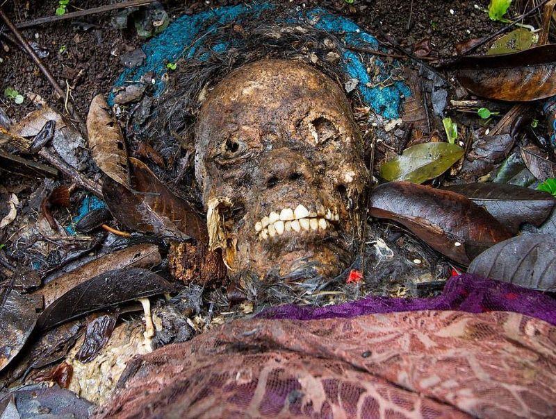 """【自然派】インドネシア バリ島のトルニャン村に伝わる""""風葬""""という埋葬方法、凄い光景・・・・(画像)・3枚目"""
