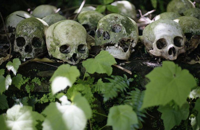 """【自然派】インドネシア バリ島のトルニャン村に伝わる""""風葬""""という埋葬方法、凄い光景・・・・(画像)・6枚目"""
