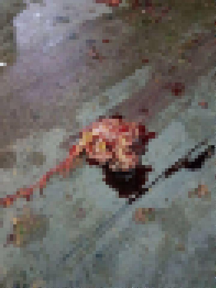 【閲覧注意】バイク事故で全身を強く打った女性、一瞬でバラバラ遺体になる・・・・・(画像)・4枚目