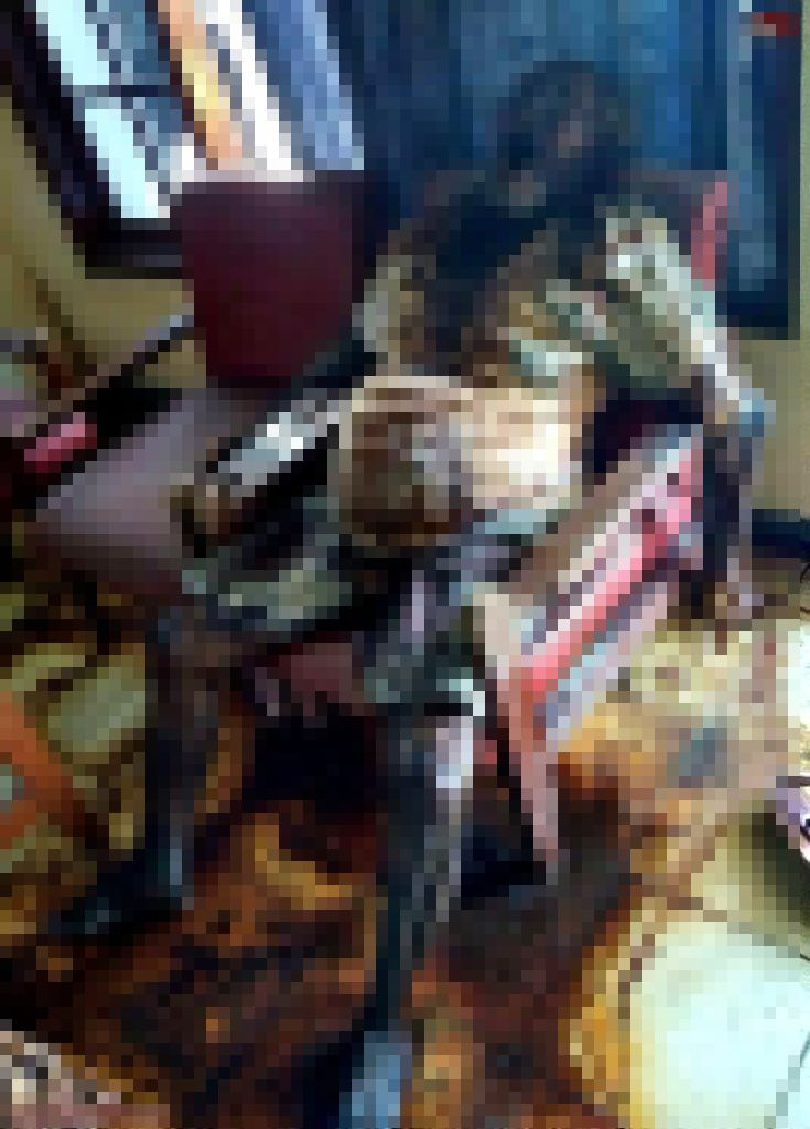 【閲覧注意】インドネシアの老夫婦、揃って服毒自殺した後2週間経って自宅で発見される・・・・・(画像)・4枚目