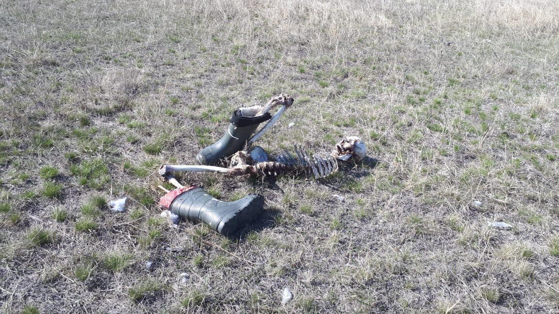 【無残】真冬のロシアで違法に国境を越えようとした男性、春になってこんな姿で発見される・・・・・(画像)・1枚目