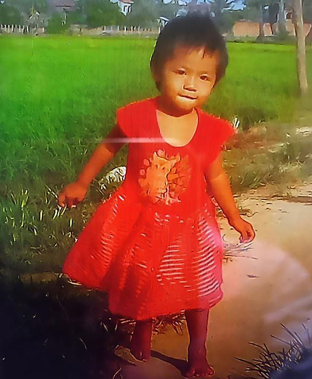 【胸糞】ワニ農場の所有者、目を離した隙に二歳の娘が檻に入り無残な姿にされる・・・・・(画像)・2枚目