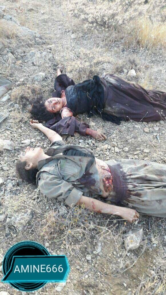 【女性兵士レイプ】ISISに生きたまま捕らえられたクルド人女性兵士、漏れなくレイプされ殺される・・・・・(画像)・8枚目