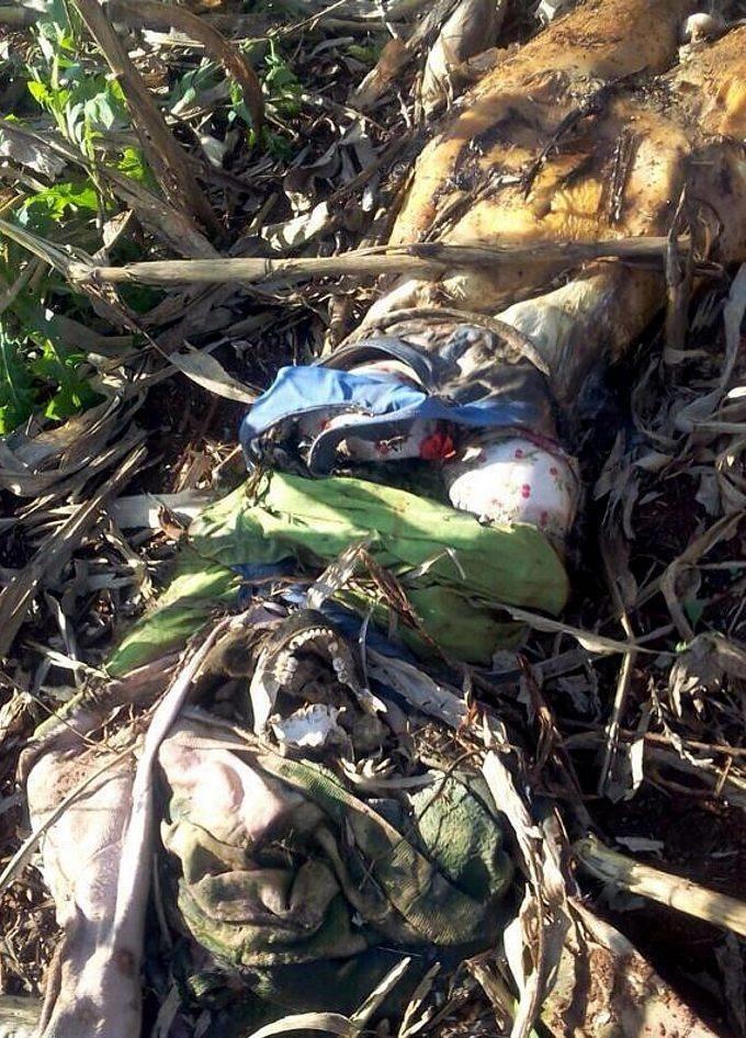 【恐怖】ブラジルで発見された一年前レイプされ放置された女性の遺体、完全にミイラになってる・・・・・(画像)・3枚目