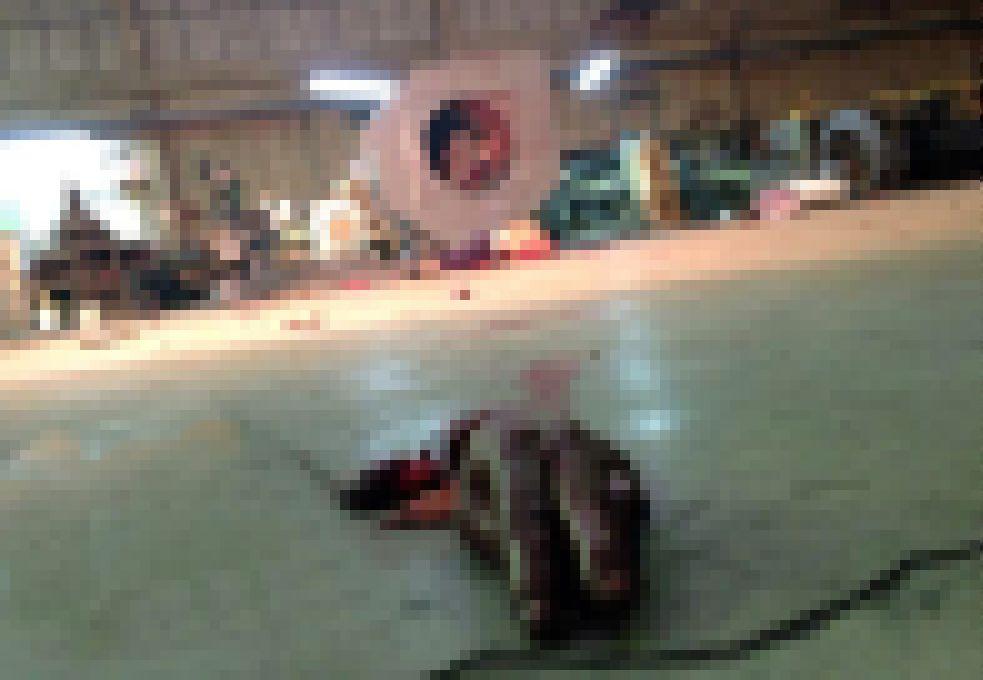 【木端微塵】巨大送風ファンの修理中巻き込まれた作業員男性、一瞬で挽肉にされる!!(画像)・6枚目
