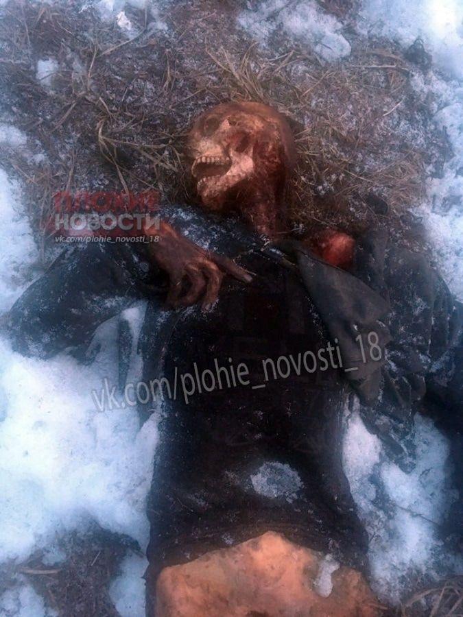 【自然の掟】氷点下10℃以下の極寒の山で遭難した男性、見事に露出部分だけ野生動物に荒らされる・・・・(画像)・2枚目