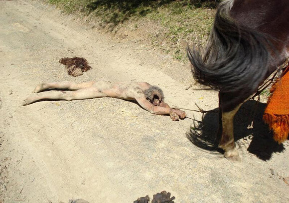 【西部劇】裸で馬に引きずられる拷問を受けた男性、リアル大根おろしになる・・・・・(画像)・2枚目