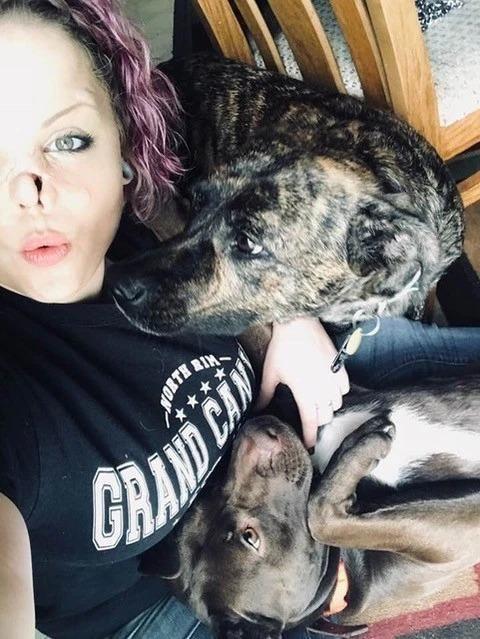 【悲惨】友人の飼い犬ピットブルに顔面を噛まれた美人ネキ、顔が崩壊してしまう・・・・(画像)・4枚目
