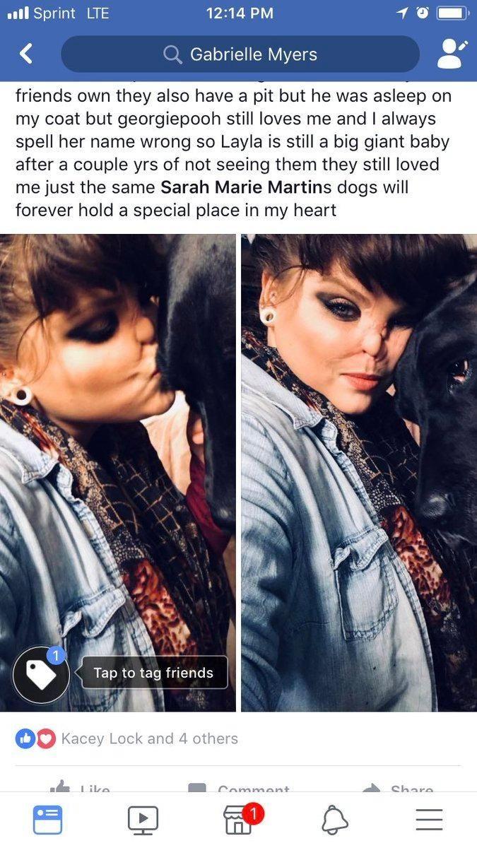 【悲惨】友人の飼い犬ピットブルに顔面を噛まれた美人ネキ、顔が崩壊してしまう・・・・(画像)・10枚目