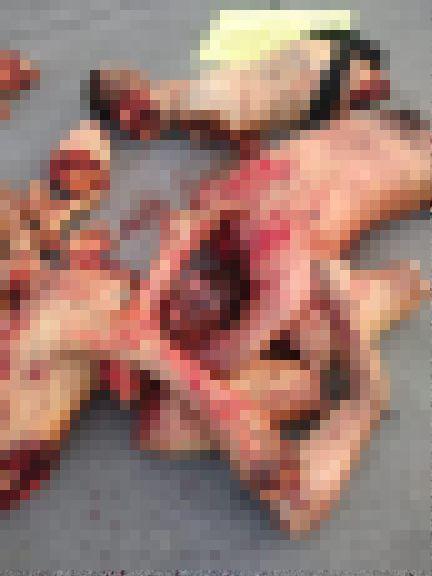 【超グロ注意】メキシコ ギャング同士の抗争で対立組織のメンバー4人がパズルのようにバラバラにされる・・・・・(画像)・1枚目