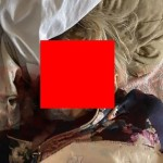【閲覧注意】ロシアのワンちゃん、飼い主が突然死したのに生き延びた理由がエグい・・・・(画像)