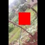 【グロ注意】カメルーンの長閑な日常、裏の畑にいきなりコレって怖すぎ・・・・(動画)
