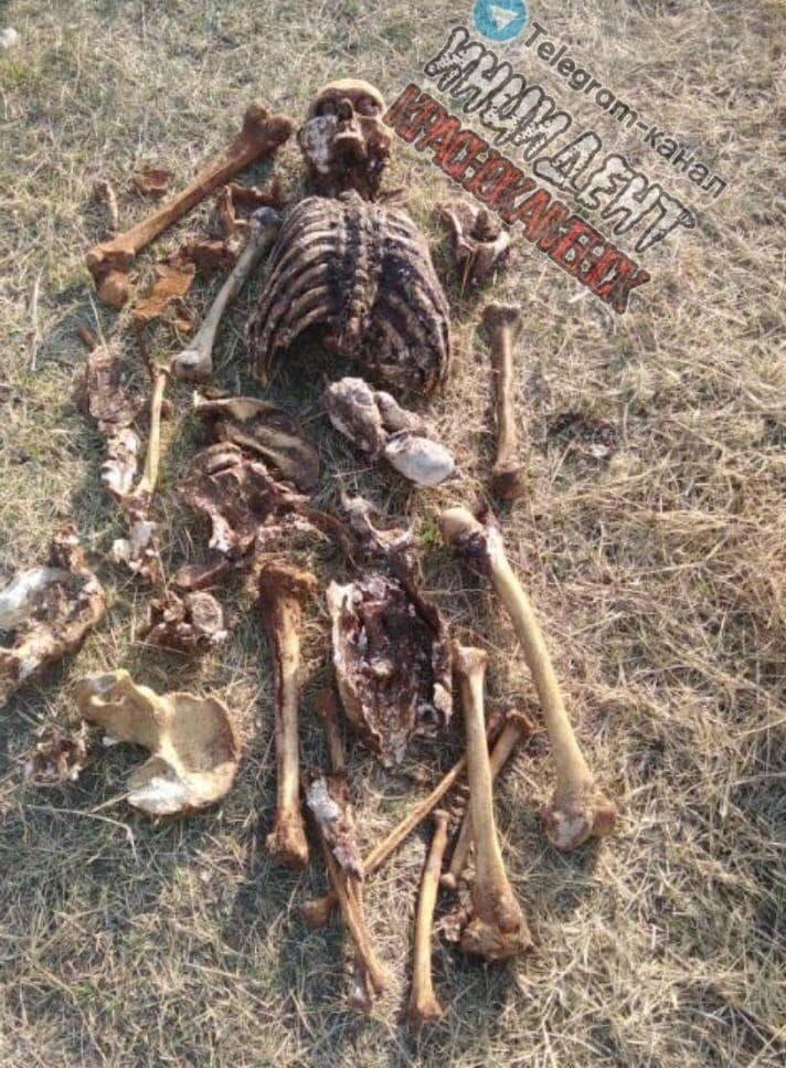 【恐怖】ロシア 住民の生活用水の貯水タンクから3年前行方不明になった男性遺体が見つかる・・・・(画像)・2枚目
