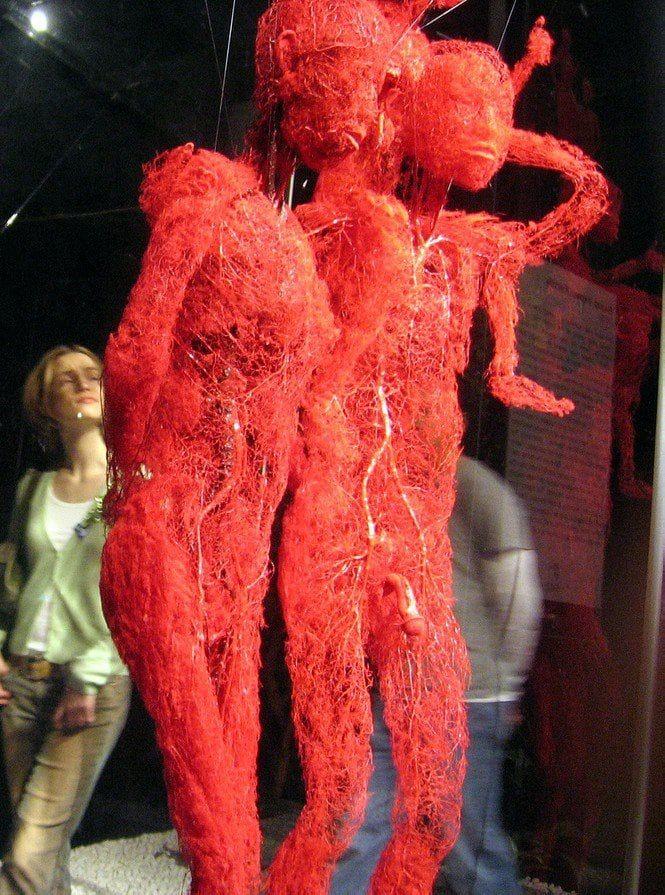 【恐怖画像】人体を無数に走る血管、ソレ以外を除去したら・・・・ホラー過ぎだろ!!(画像あり)・4枚目