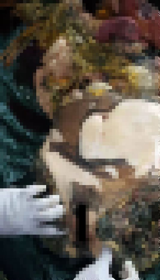 【グロ注意】タイで行方不明になった巨乳美女、レイプされこんな姿になって発見される・・・・(画像)・5枚目
