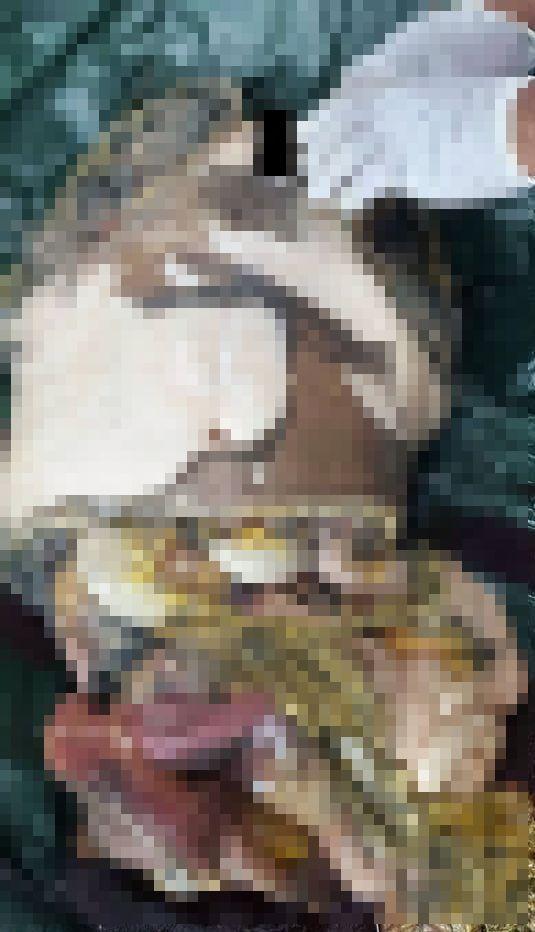 【グロ注意】タイで行方不明になった巨乳美女、レイプされこんな姿になって発見される・・・・(画像)・6枚目