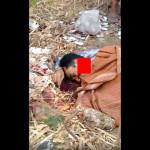 【グロ注意】インドネシア山中で発見された男性惨殺死体、首がパックリ・・・・・(動画あり)